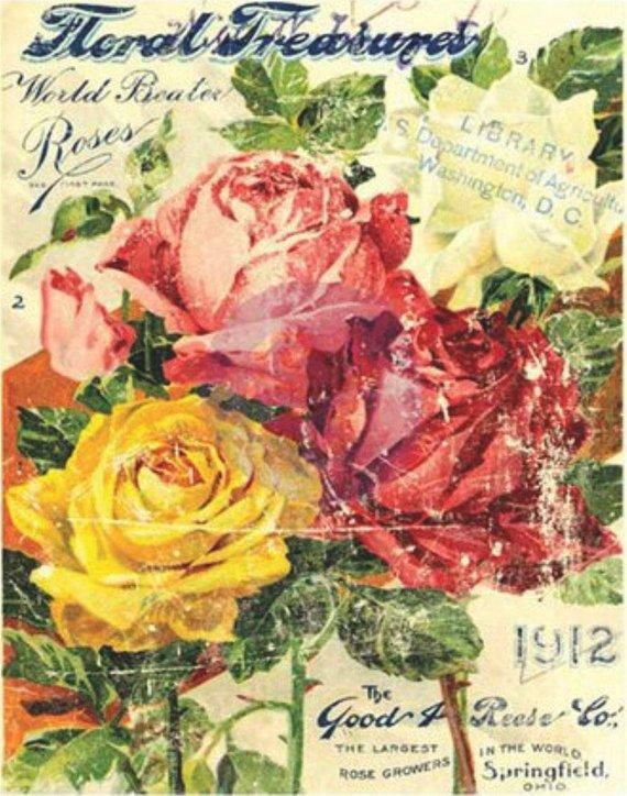 Floral Treasure - My Shabby Chic Corner - Prodotti Iron Orchid Designs - IOD