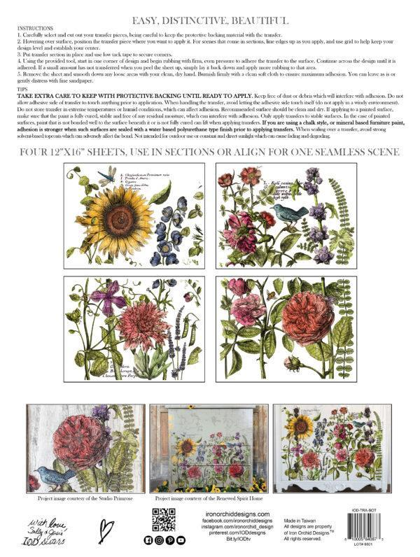 Botanists Journal IOD Transfer pad packaging BACK 600x796 - My Shabby Chic Corner - Prodotti Iron Orchid Designs - IOD