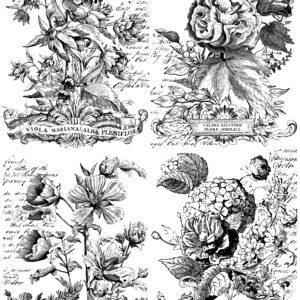 IOD DT Classic Boquets 24x33 Paintable Transfer 300x300 - My Shabby Chic Corner - Prodotti Iron Orchid Designs - IOD