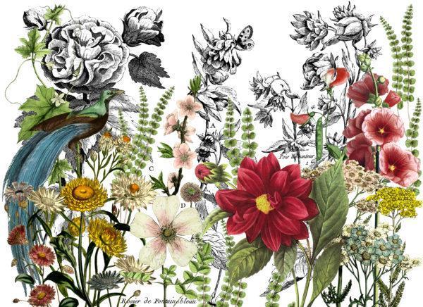IOD DT Midnight Garden 24x33 600x436 - My Shabby Chic Corner - Prodotti Iron Orchid Designs - IOD