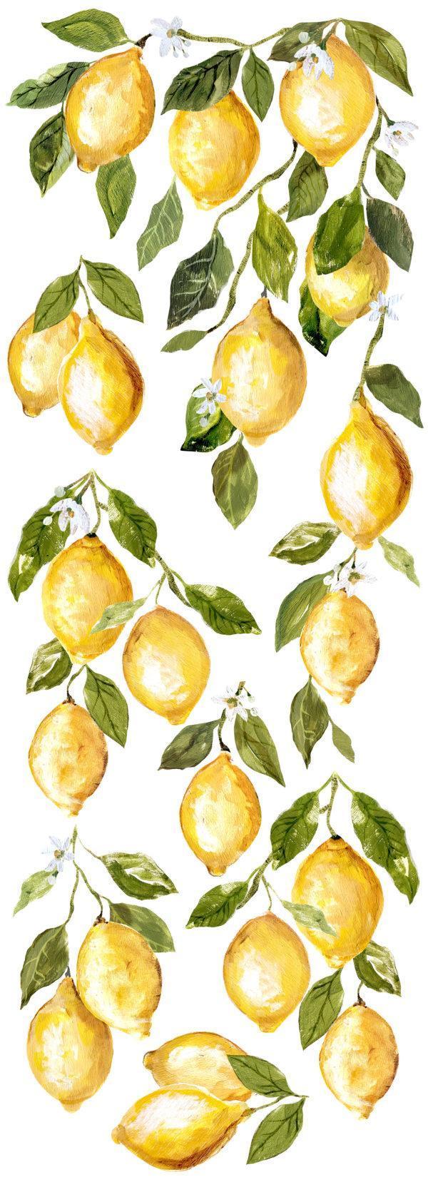 IOD DT Lemon Drops Preview DEC TRA LEM 600x1650 - My Shabby Chic Corner - Prodotti Iron Orchid Designs - IOD