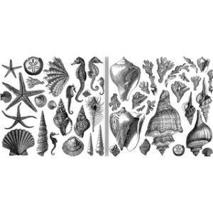 Seashore set 300x300 - My Shabby Chic Corner - Prodotti Iron Orchid Designs - IOD