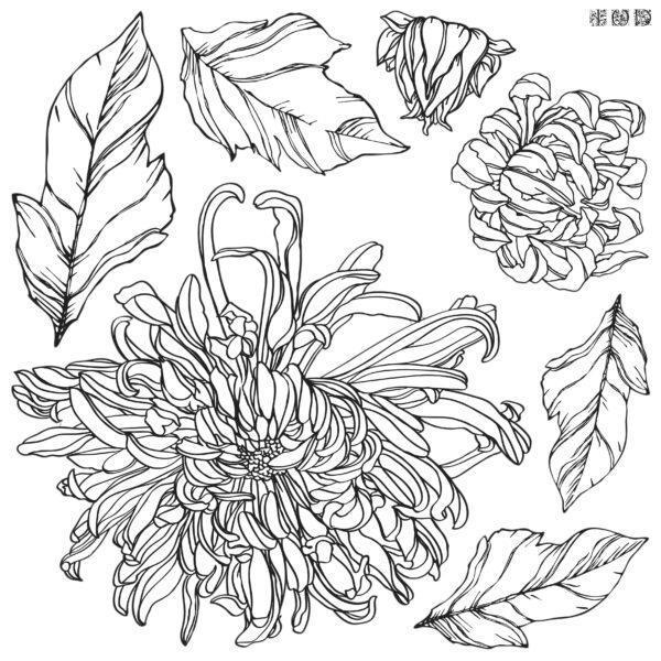 Decor Stamp Chrysantemums2 600x600 - My Shabby Chic Corner - Prodotti Iron Orchid Designs - IOD