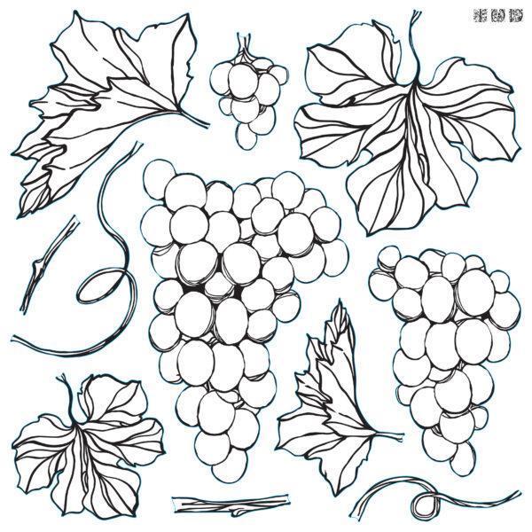 Decor Stamp Grapes 600x600 - My Shabby Chic Corner - Prodotti Iron Orchid Designs - IOD