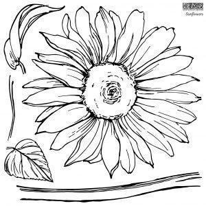 IOD STA SUN STAMPS Sunflowers 1 1 300x300 - My Shabby Chic Corner - Prodotti Iron Orchid Designs - IOD