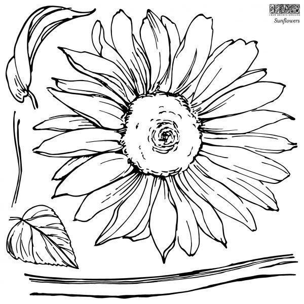 IOD STA SUN STAMPS Sunflowers 1 1 600x600 - My Shabby Chic Corner - Prodotti Iron Orchid Designs - IOD