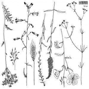 sprigs 01 1 300x300 - My Shabby Chic Corner - Prodotti Iron Orchid Designs - IOD