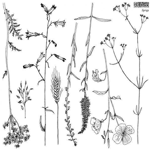 sprigs 01 1 600x600 - My Shabby Chic Corner - Prodotti Iron Orchid Designs - IOD